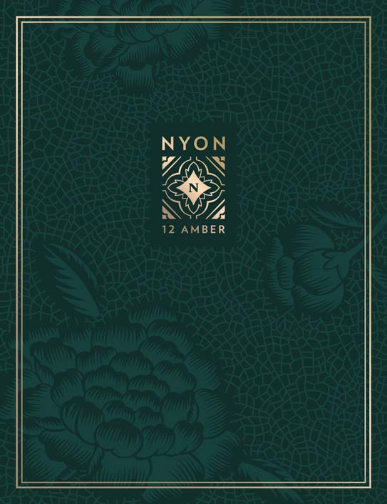 nyon-12-amber-e-brochure-download